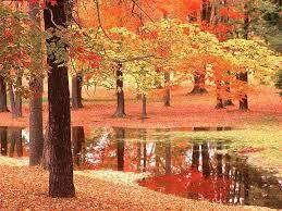 autunno si specchia nell'acqua