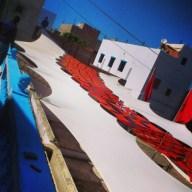 Scamardi Marocco
