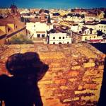 S.Scamardi- Jane's walk sulle azoteas di Siviglia