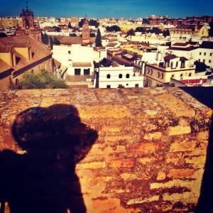 S.Scamardi-Siviglia celeste -Jane'walk 2014
