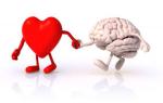 testa e cuore