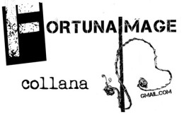 logo fortuna image