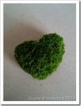 cuore-di-muschio_thumb.jpg