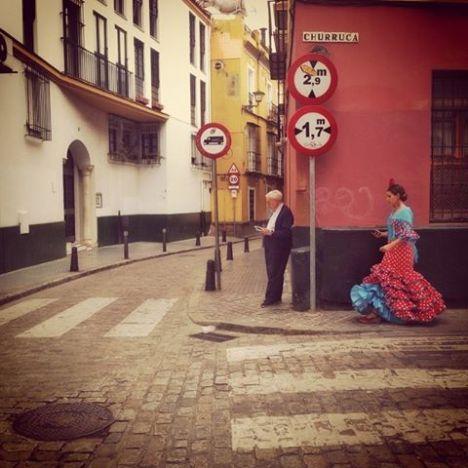 SScamardi 2015-Lettore e Flamenca-dinamismo