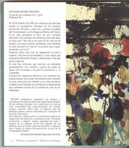 flores y cemento-Francisco Ortega