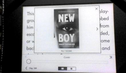 newboy-kindle-EN