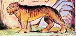 la tigre di Blake